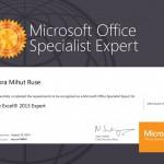 Mihut Ruse Aurora - Excel