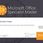 Tanase Diana - Master2013