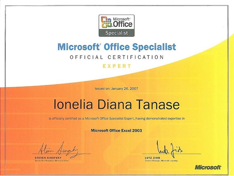 Tanase Diana - MOS Excel 2003